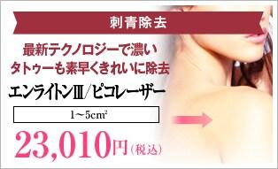エンライトンⅢ/ピコレーザー