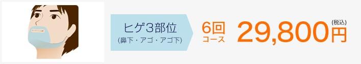ヒゲ3部位(上口ヒゲ・アゴ・アゴ下)69,800円(税込)